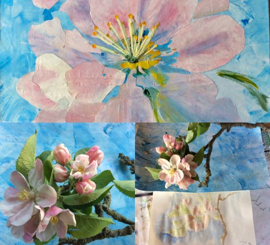 Apple blossom collage with sketchbook and photographic studies